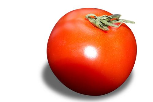 Tomato - Picture of a fruit vegetable tomato