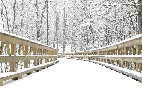 Winter season - Do you like winter or spring season