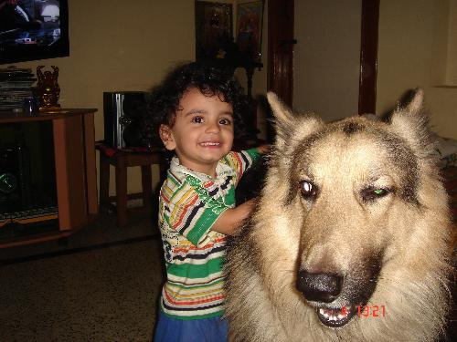 Dogs seem to enjoy time with Kids and vice-versa. - This is the photograph of my son playing with Bruno.