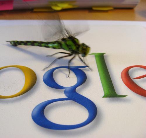 google adsence - for google adsence