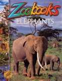 ZooBooks - are awesome for kids! Your kids get one every month in which is about one animal and gives all kinds of neat details.