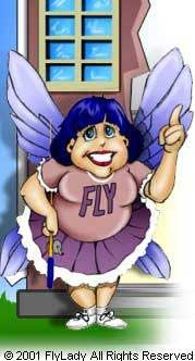 Flylady - I got this off of the website!