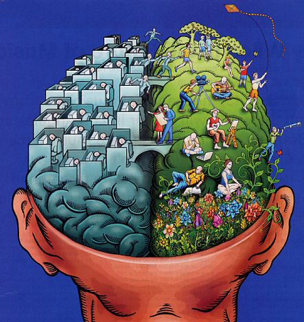 Left-Right Brain Personality - What is your personality Type?, are you left or right brain sided?