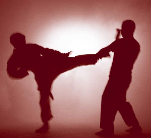 "Martial Arts - This picture portrays the ""martial arts"" in action. This is a standing fighting style that could symbolize many types of martial arts like karate taekwondo, etc."