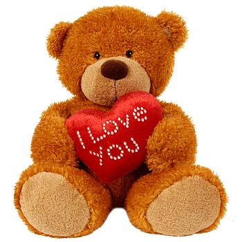 cuddly teddy bear - www.arenaflowers.com 350 x 350 -45k