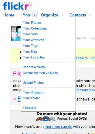 Do you have flickr account - this is a picture of flickr account page.