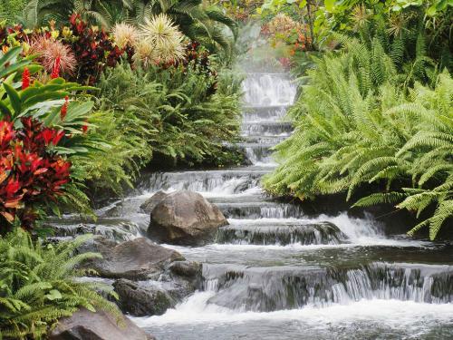 nature - beautiful creation of god