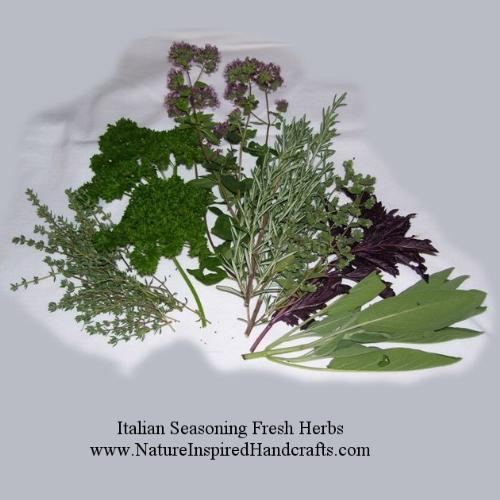 Italian Seasoning Herbs - I am growing these herbs in my garden this year: