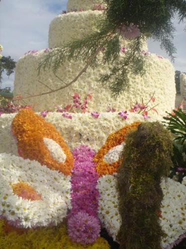 flowers - festival