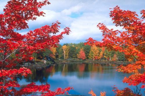 autumn - What a beautiful season!