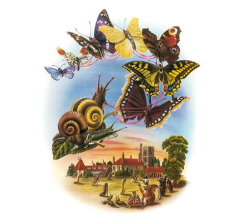 "Illustration from Children's Book - ""Butterfly Ball"" illustration"