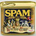 Spam - spam, spam, spam, spam