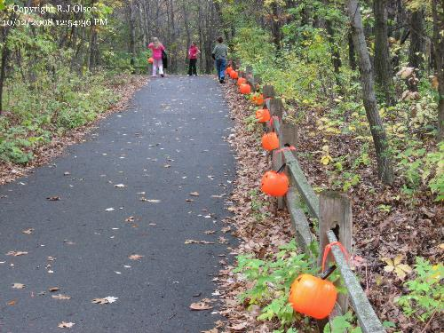 Pumpkin Trail - Leading to the carving area