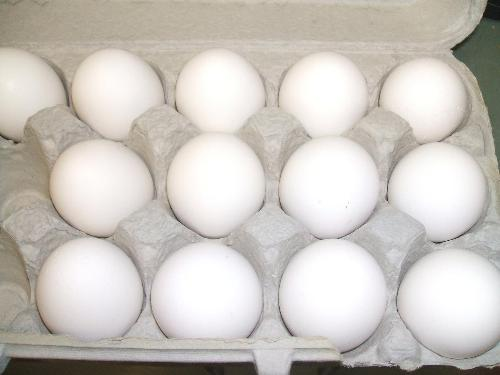 Eggs for Cooking - Eggs that are used for cooking.