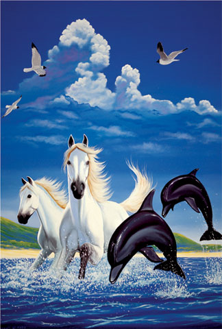 dolphins - dolphins and horses