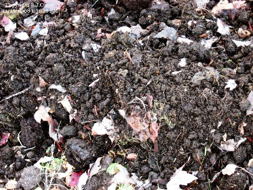 My Compost - Finally dug it out and spread it around a garden bed