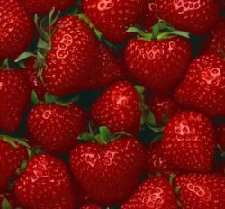 Stawberry - Stawberry