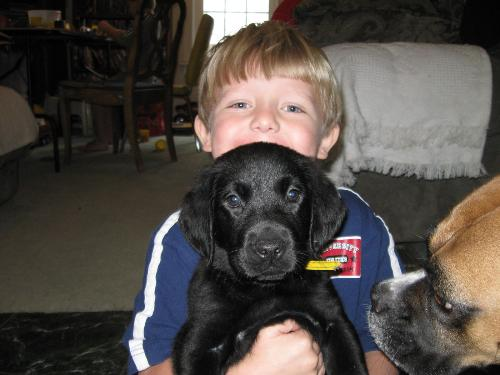 Phenix with puppy - One of 8 puppies...