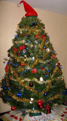 Christmas Tree - Our Community Christmas Tree