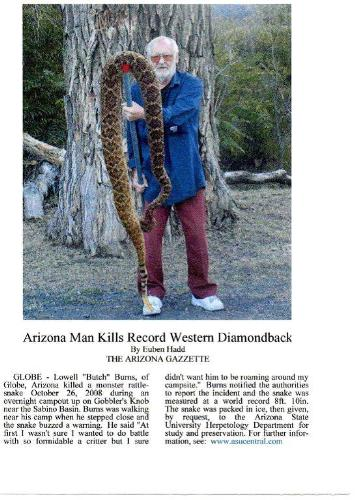 Huge snake killed in Arizona. - I don't know what I would have done if I had run up on this monster. But it sure looks like it is a good amount of years old.