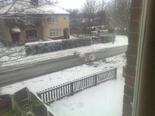 Snow - A few kids up the street have caused a roadblock of bollards using giant snow balls