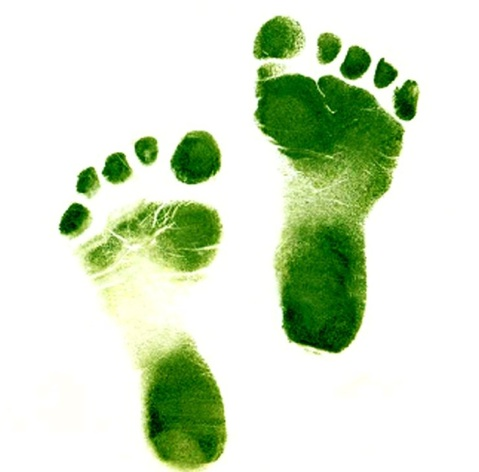 Foot steps - Green colored feet steps.