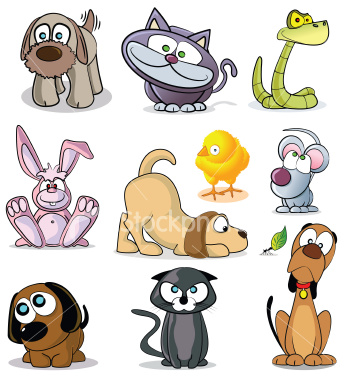 pets - animal lover :) 1st pets that you have