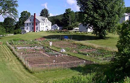 Community Garden  - Located in My Hometown