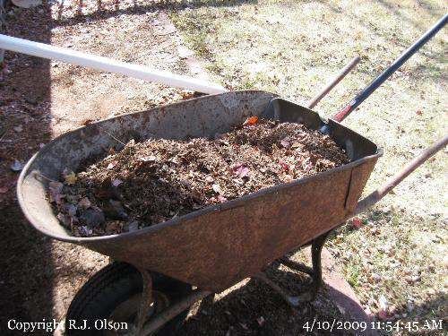 Mulch - One of many wheelbarrows full of mulch to be  turned into compost for my garden and flower beds.