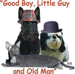 Good Boy, Little Guy and Old Man Logo - This is the logo for my new business. What do you think?