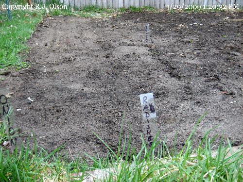 Garden Bed - With tags (markers) this year.