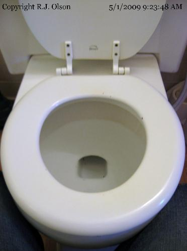 Toilet Seat - Small chips and ready to be replaced
