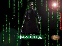 THE MATRIX - NEO : THE MATRIX