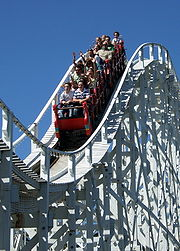 Roller Coaster - I get sick taking a ride in a rol - going to a park with different kinds of roller coasters is not my dream of fun.