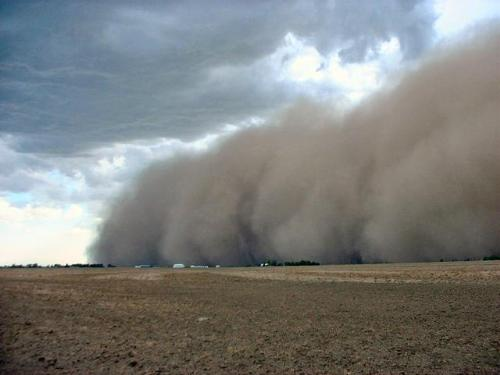 Dust Storm - This is an amazing picture of dust being blown across the fields.