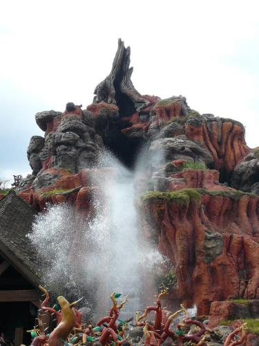 splash mountain - my fav ride.