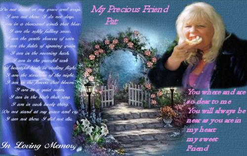 My wonderful Friend Darkwing  - Rest in peace I know the Angels are with you now and I know you will never be far