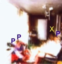 "Unexplained Easter Guest - The ""P""s in the photo, is where there are people sitting. 