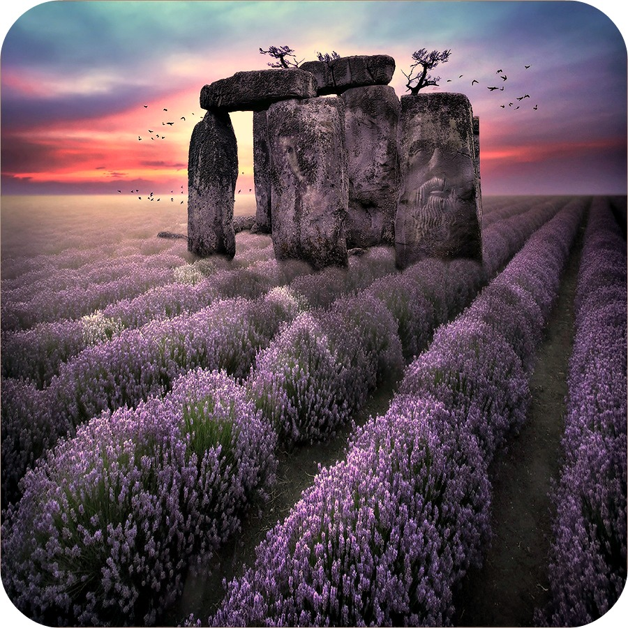 Daily Poetry and Stories Portal - Life is Just very Simple, do Not Insist to make it Complicated