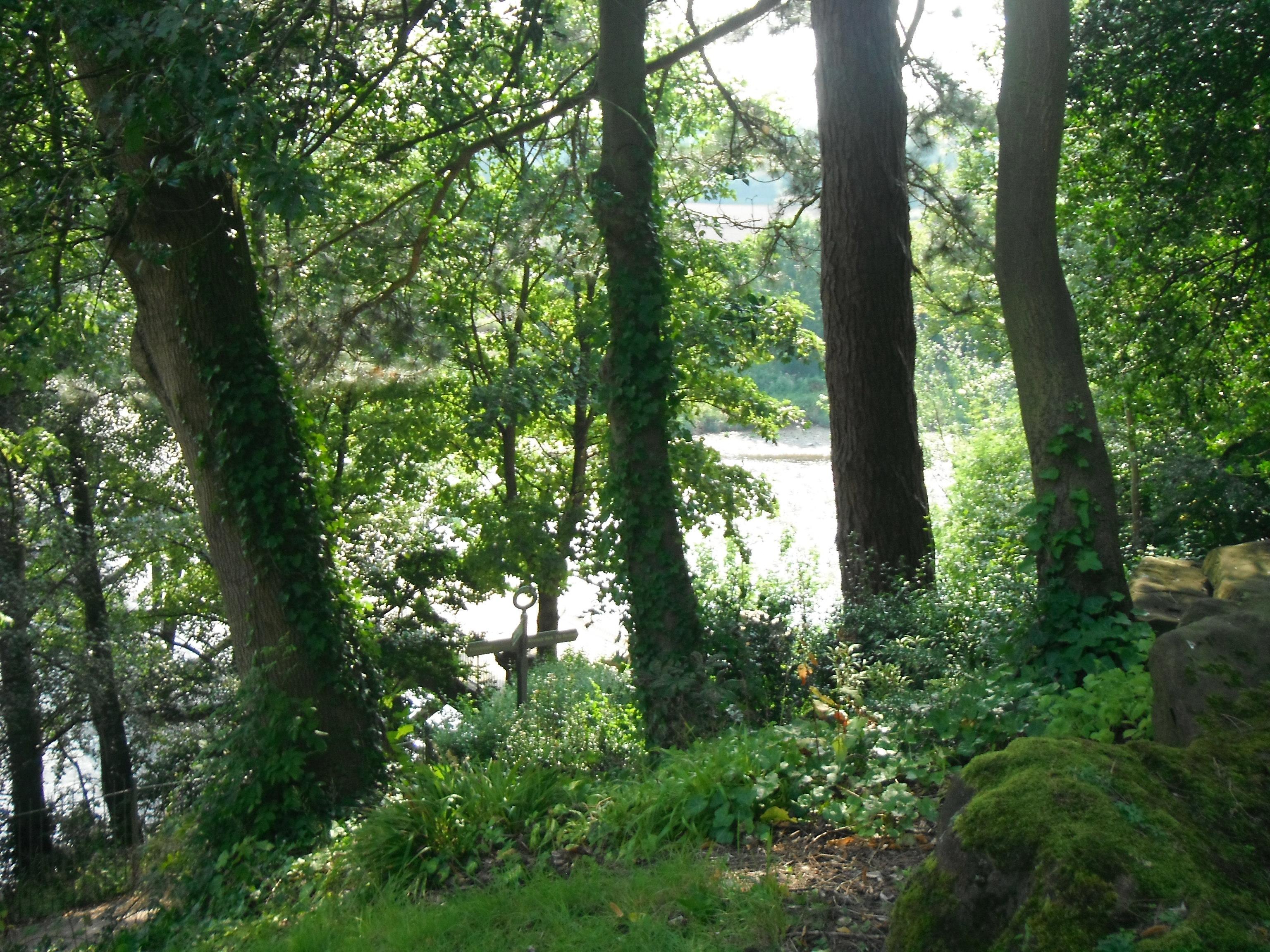 Preston's Avenham Park, taken by me