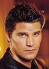 David Boreananaz - Hottie