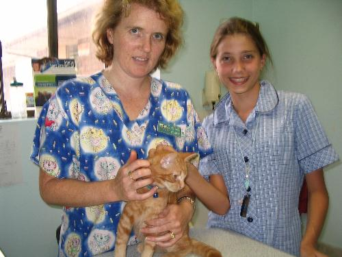 My Daughter Interviewing the Vet - This photo shows my daughter, then age 12 years, interviewing our local Vet, for an English Competition. She won the Competition!