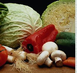 vegetal - veg
