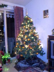 Tree of last year - This was the tree of last year. It was gold