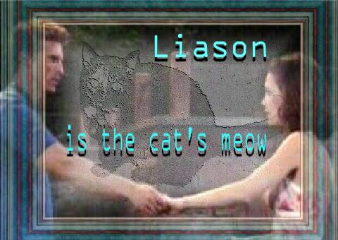 cat;s meow - Liason is the cat's meow banner. Choclate the cat in background!