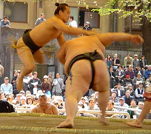 sumo - sumo is an interesting sport